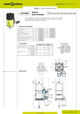 Moteur pneumatique REXSON 5000 - Fiche caractéristiques détaillées