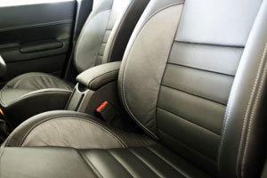 (1) AUTOMOTIVE leather